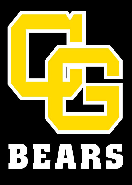 Image result for clearbrook-gonvick bears